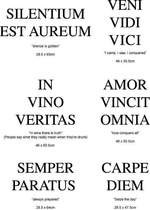 Expression latine - Proverbe Latin - Carpe Diem, Veni vedi vici, In vino veritas