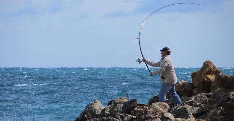 صيد سمك بالط عم والشبكة وطرق أخرى سهلة وبسيطة Fish