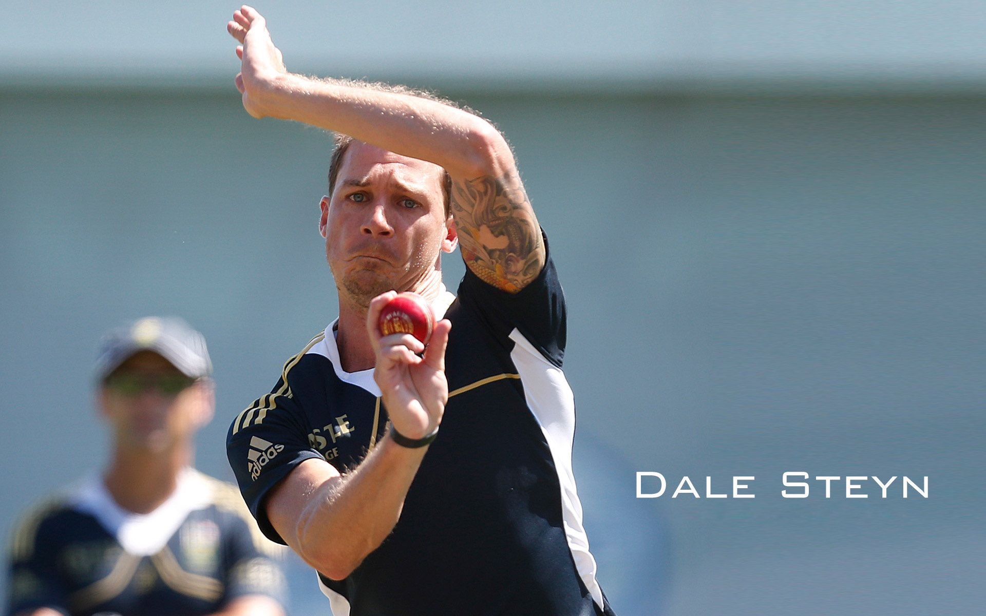 Dale Steyn Fast Bowler Hq Picture Bowler Hd Images Dale