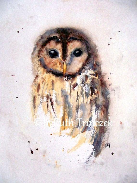Kleiner Waldkauz Little Brown Owl 30 X 40 Cm Von Artruthtrinczek