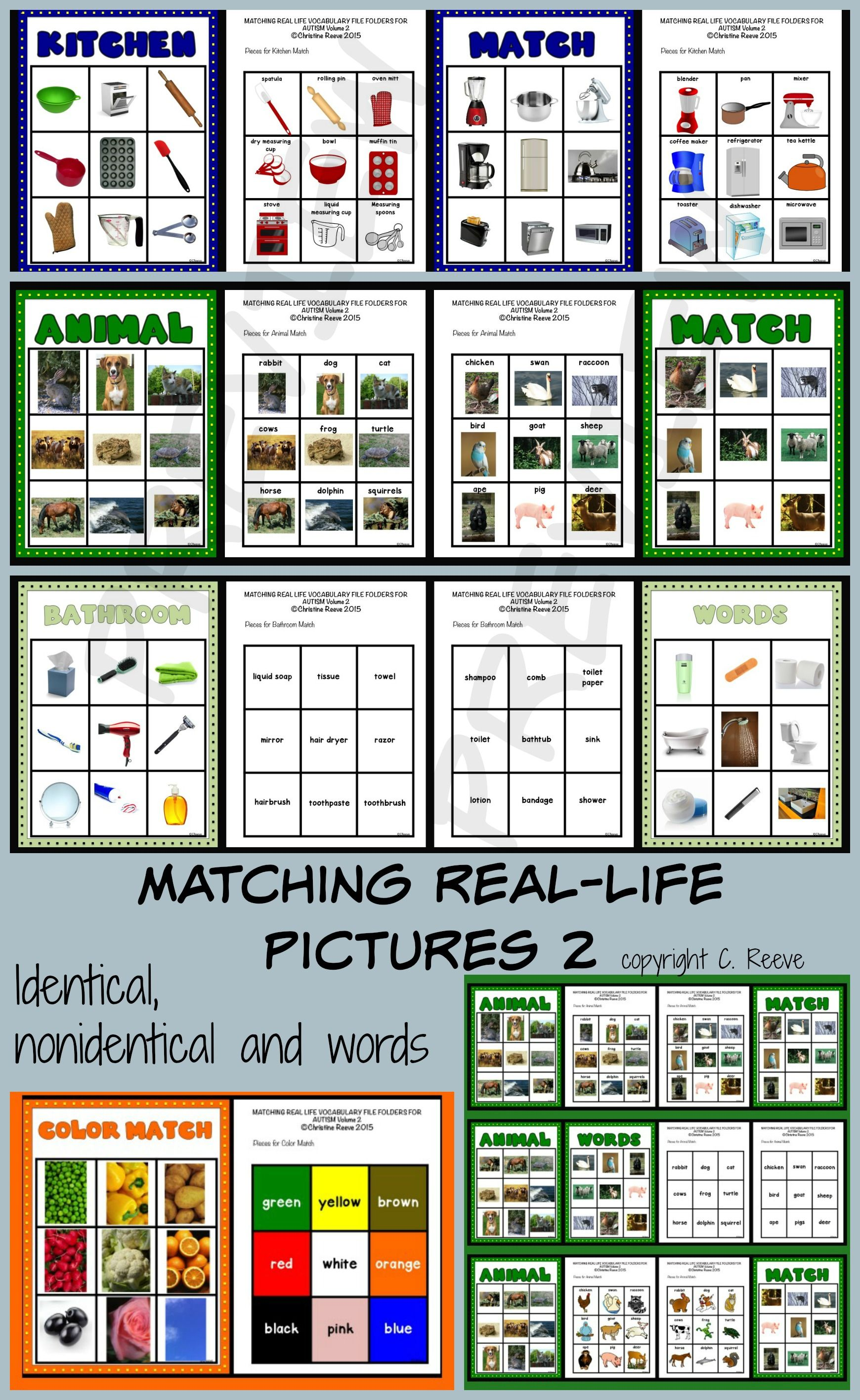 Autism Matching Real Life Vocabulary File Folders 2