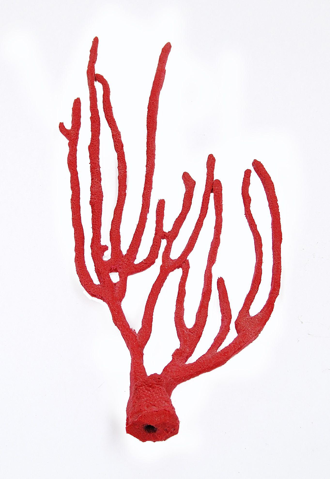 Gorgonian Sea Whip | Living Color Aquariums | Living Color Aquariums ...