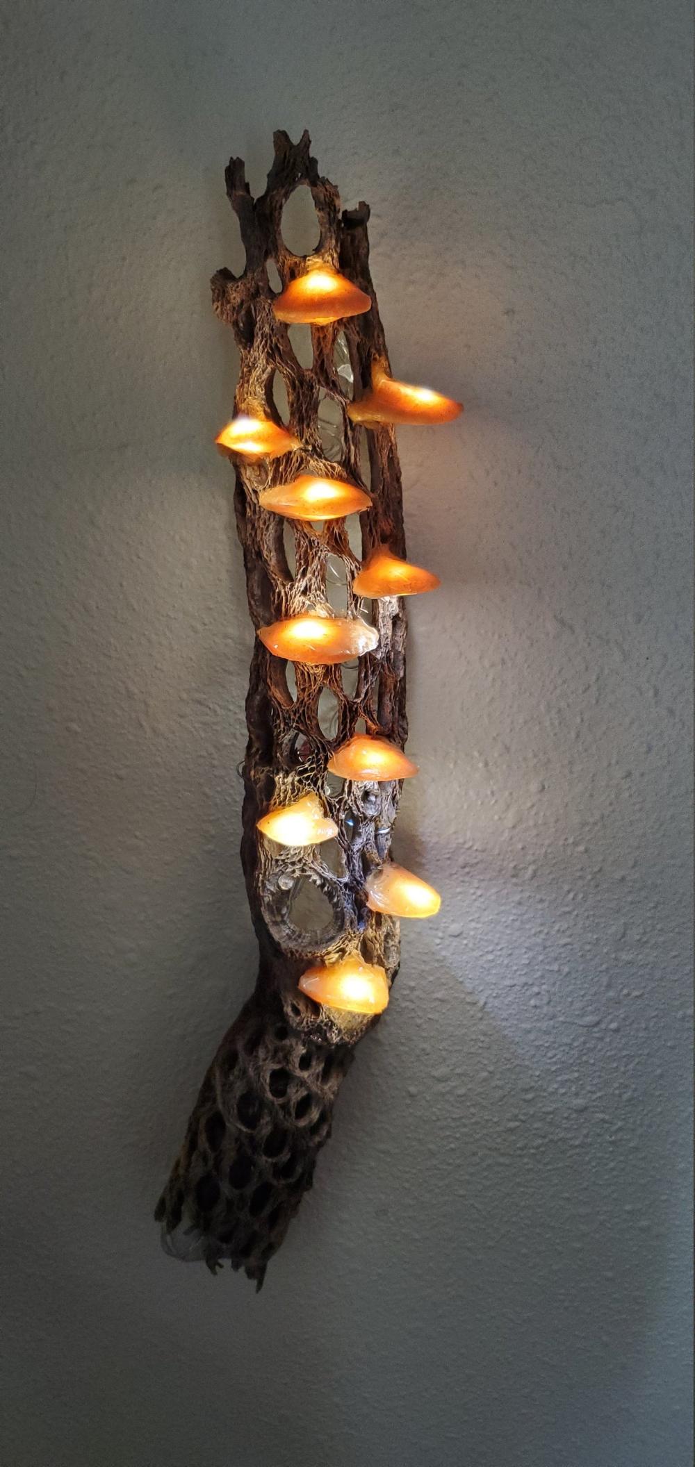 Gold Cholla Led Mushroom Lamp In 2020 Mushroom Lamp Lamp Stuffed Mushrooms