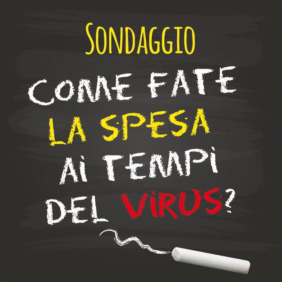 Sondaggio: come fate la spesa ai tempi del virus? - La Macchina del GustoLa Macchina del Gusto
