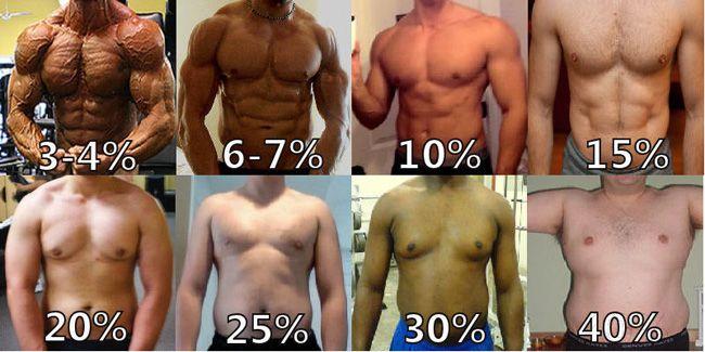 Bildergebnis für 3 percent body fat