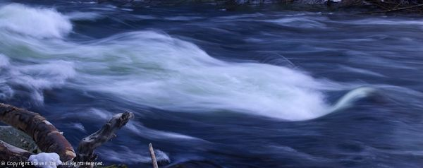 Rapids, Tree Branch, Merced River
