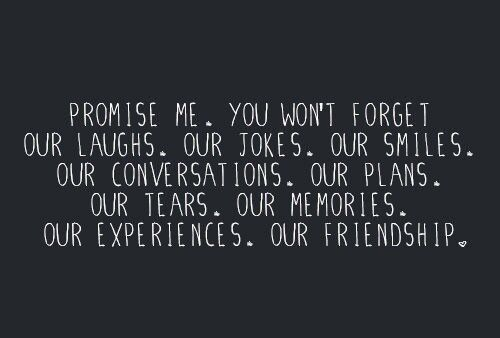 Promise me. You won't forget our laughs. Our jokes. Our Smiles. Our conversations. Our plans. Our tears. Our memories. Our experiences. Our friendship. [I think she already has.] (I think he already has.