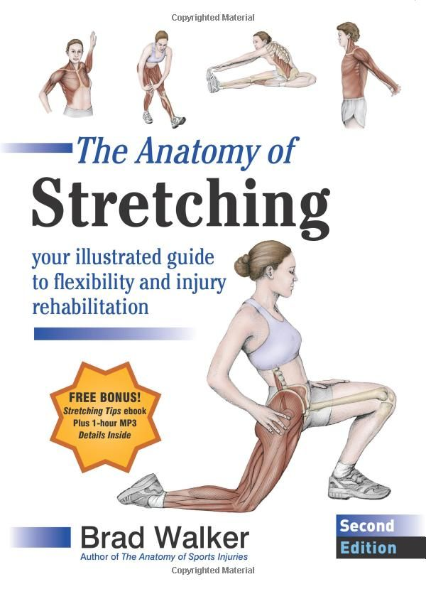 Amazon.com: The Anatomy of Stretching, Second Edition: Your ...