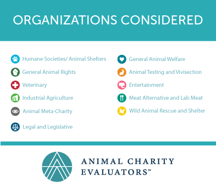 A List Of The  Animal Charity Organizations That We Examined In
