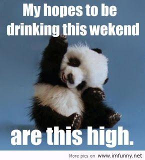 Funny Weekend Quotes Funny Weekend Quotes | Weekend Breaks Funny Quotes ~ Facebook n  Funny Weekend Quotes