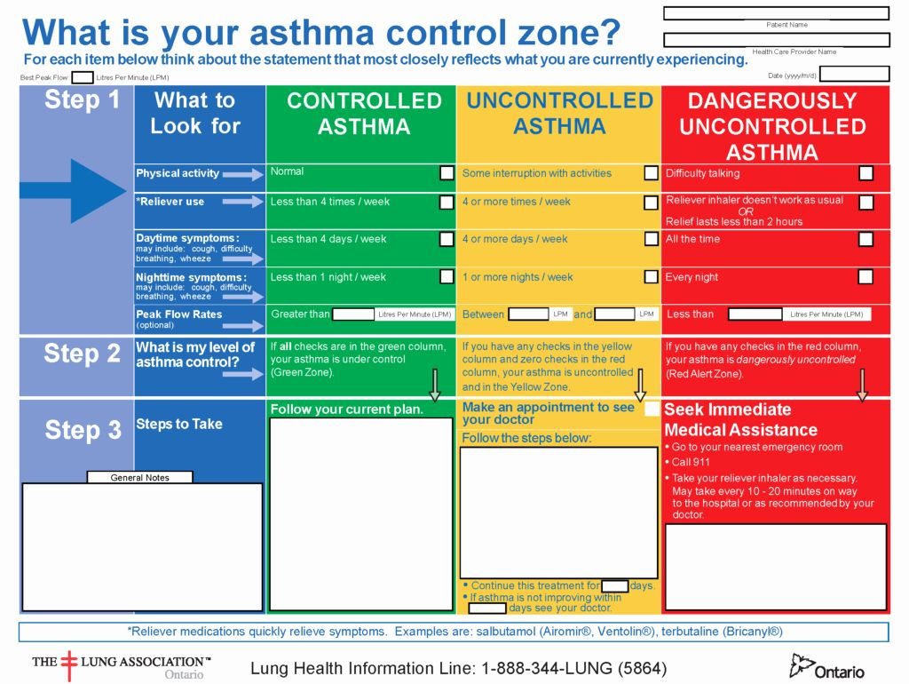 Asthma Action Plan form Inspirational asthma Action Plan ...