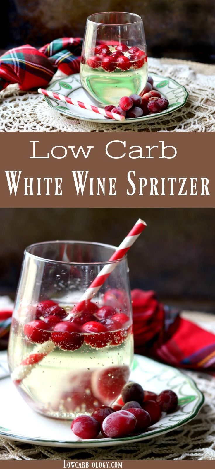 Low Carb White Wine Spritzer With Pineapple Vodka Is Low Carb Perfect For Holiday Celebrations Light An White Wine Spritzer Wine Spritzer Low Carb Cocktails