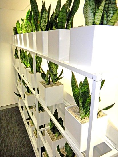 Let green design help you create a vertical garden for Help design my garden