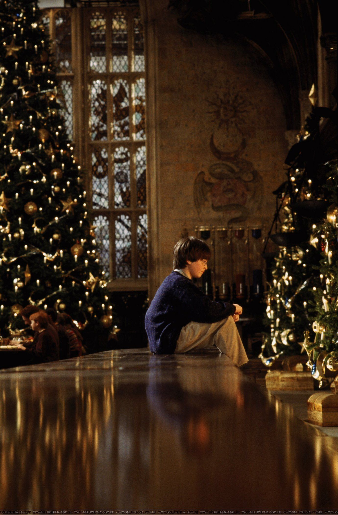 Harry Potter And The Philosopher S Stone Film Harry