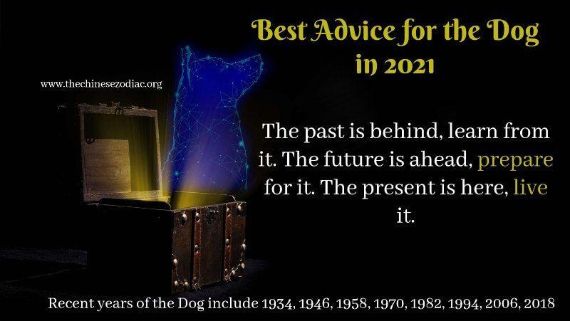 Year Of The Dog 2021 Horoscope Feng Shui Predictions Dog Horoscope Dog Years Horoscope