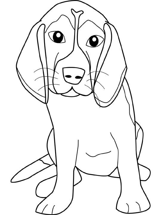 Beagle Dog Coloring Pages Paginas Para Colorear Dibujos De Perros