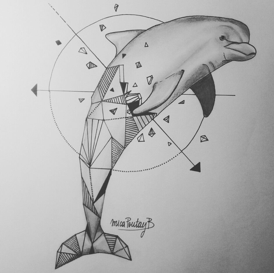 Geometric Dolphin By Micaela Poutay Inspired By Kerby Rosanes