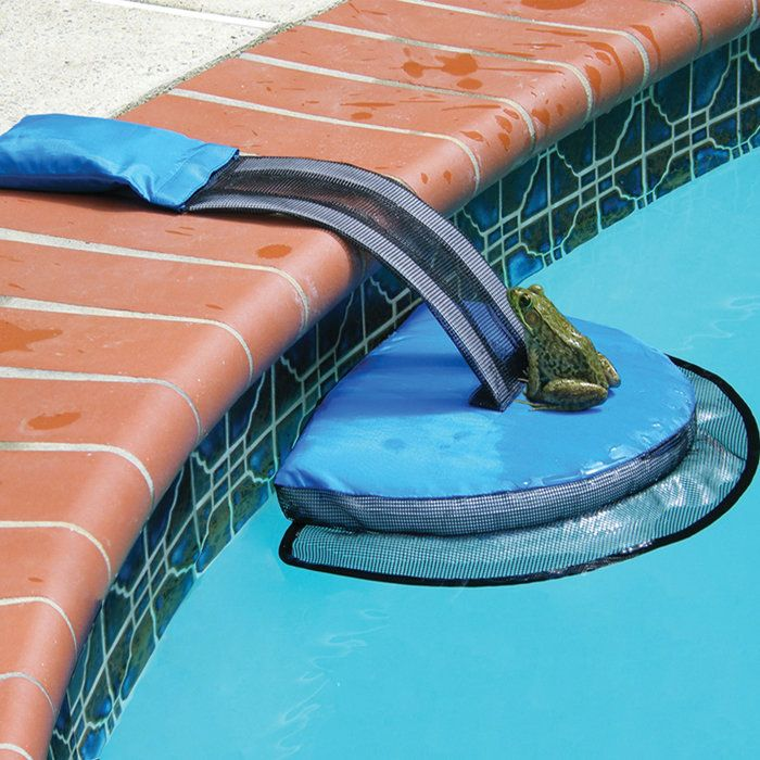 Give frogs, lizards, ducklings, and other small critters a chance to escape your swimming pool on their own.