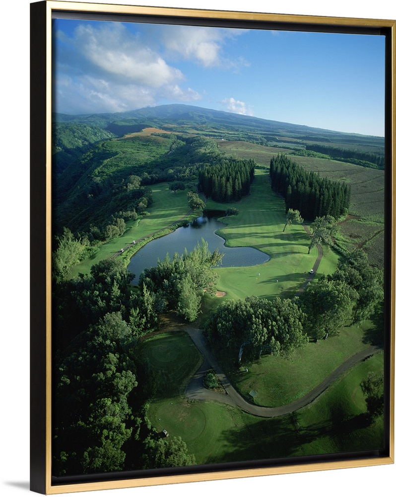 Golf Course Kapalua Maui Hawaii In 2020 Hawaii Wall Art Maui Golf Courses