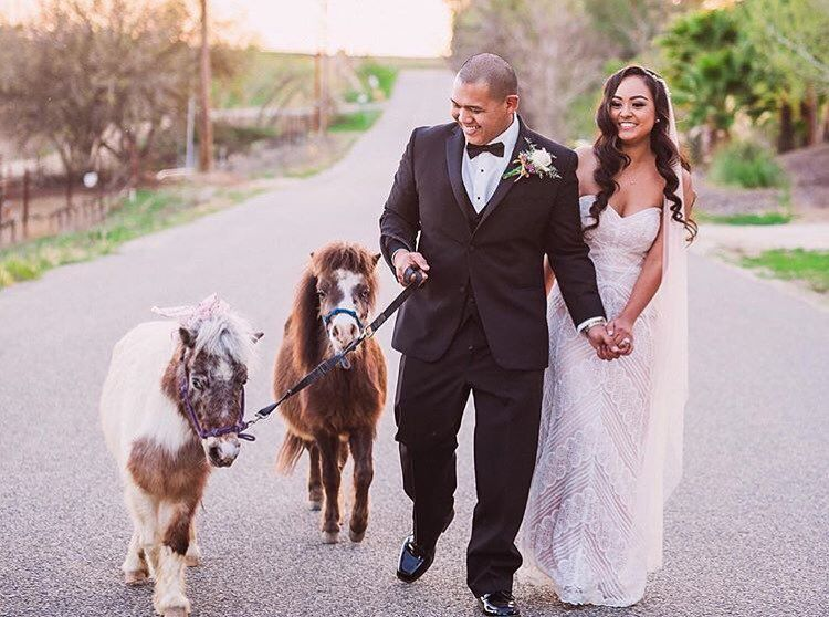 One word: PONIES!!!!  #loveandlace #loveandlacebridal  Photo: Anthony Arcinas @anthonyarcinasphoto  @martinmaproduction  Video: Feend Media  @feendmedia  Hair & Makeup: Luong Lasting @luonglastingteam  @luonglastingbykim @phamousbeauty  @mang0tammy  Coordinator: At your Door Events @atyourdoorevents  Media Coordinator: Krystle Faustino @krystle_krops  Venue: Temecula Coach House @temeculacoachhouse