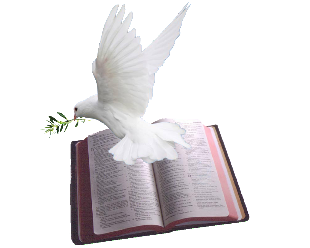 Cross With Dove And Bible Abiding Word Ministries Bible