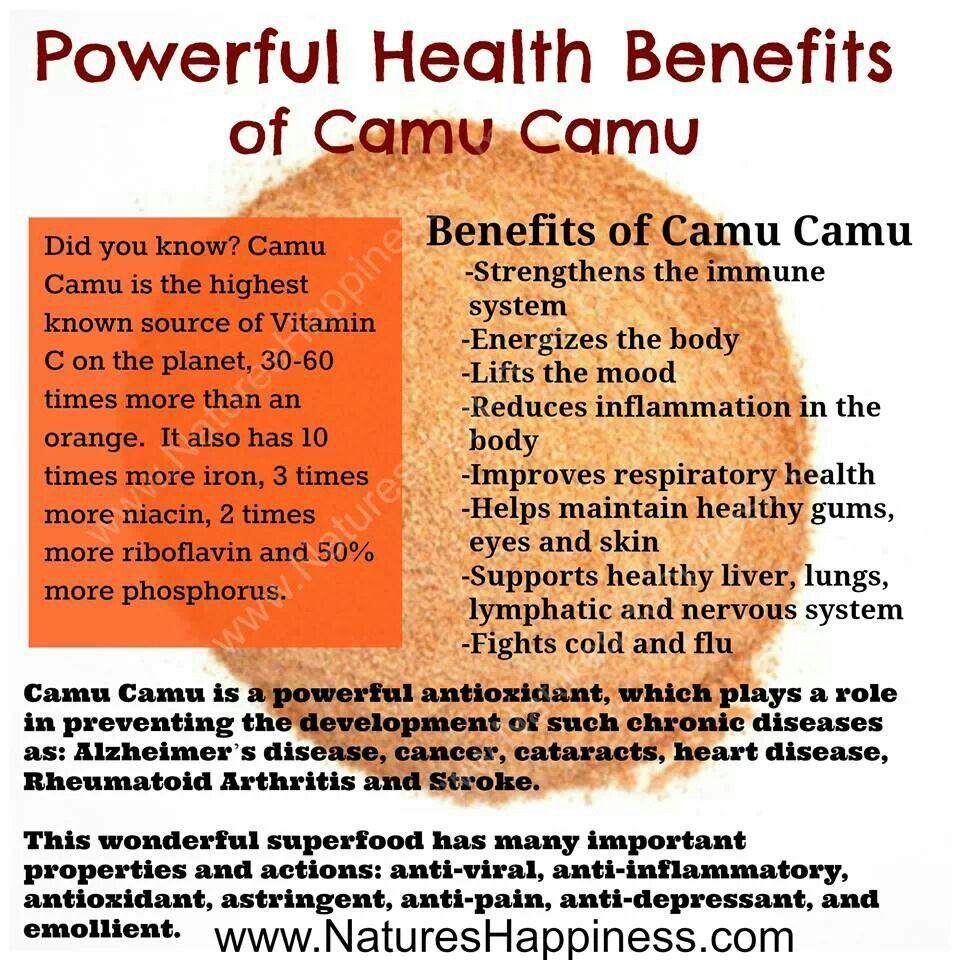 Camu Camu Benefits Healing Foods Infographics Health