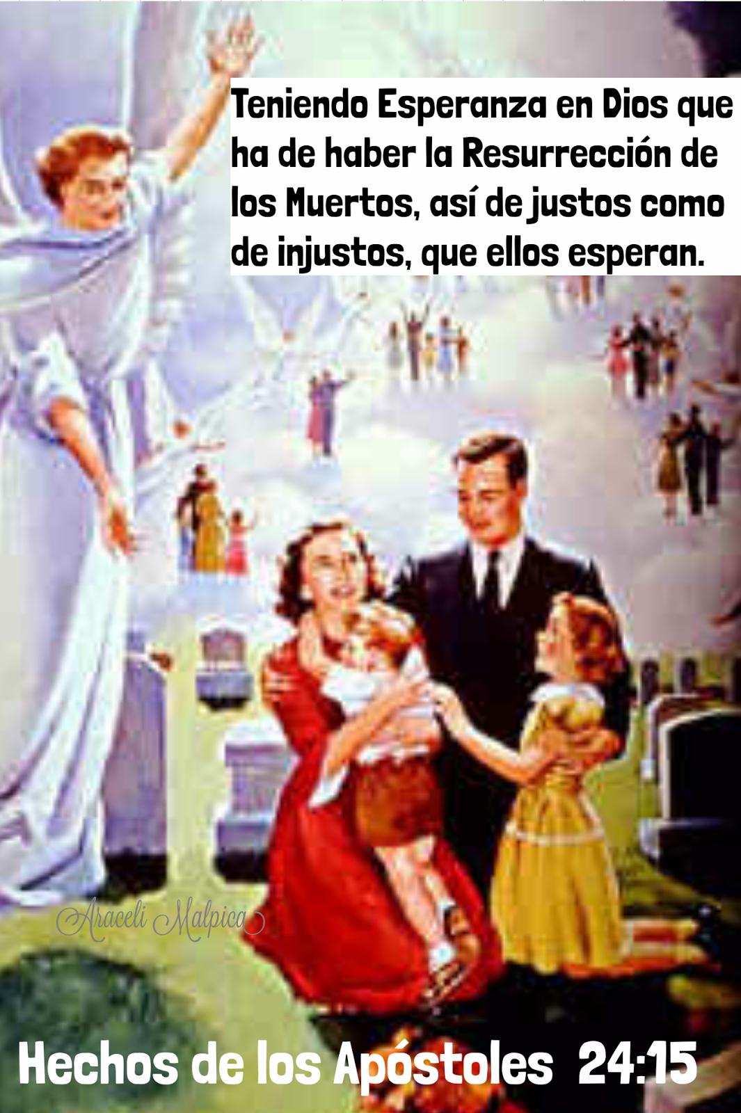 👫🍃NUNCA DEBEMOS PERDER LA FE, LA ESPERANZA , LA CONFIANZA EN DIOS, EN QUE JESUS REGRESARA, POR LAS PERSONAS QUE PERDIMOS , EXISTE LA RESU...