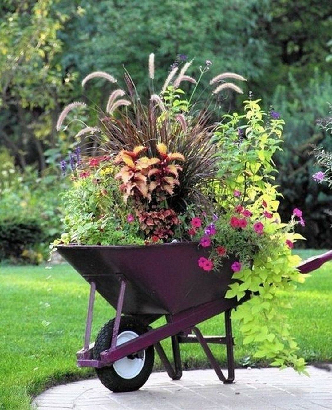 What Kind Of Plants Do You Plant In Your Garden? If You