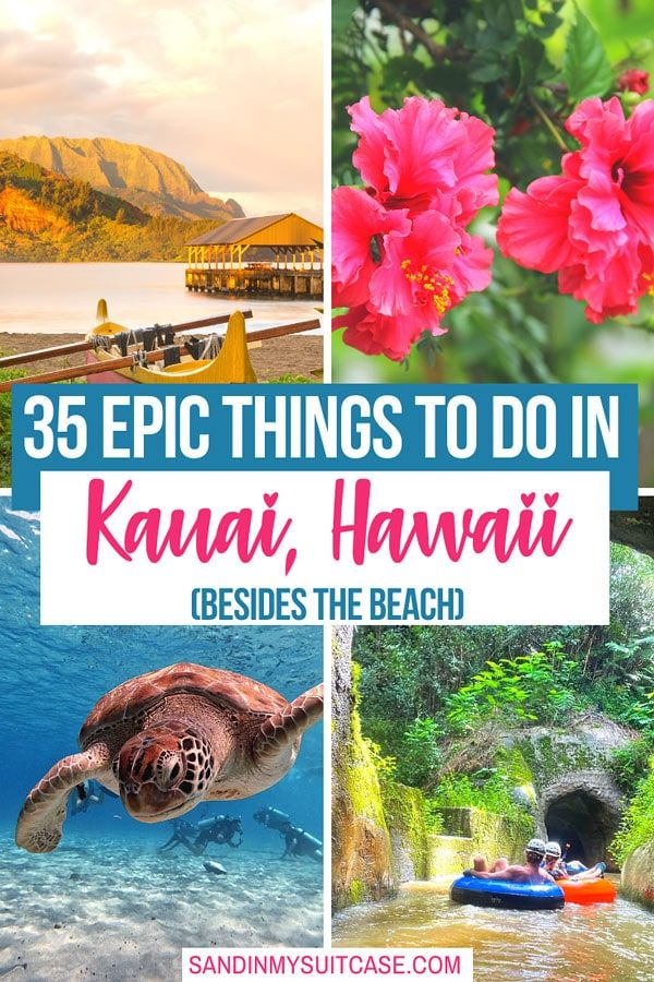 What to do in Kauai? From learning about monk seals to sailing the Na Pali Coast, check out the 35 best things to do in Kauai, Hawaii! | Kauai activities | best things to see in Kauai, Hawaii | attractions in Kauai