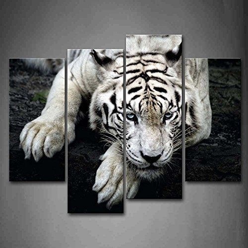 Wild Tigers in Snow Canvas Print Painting Framed Home Decor Wall Art Picture