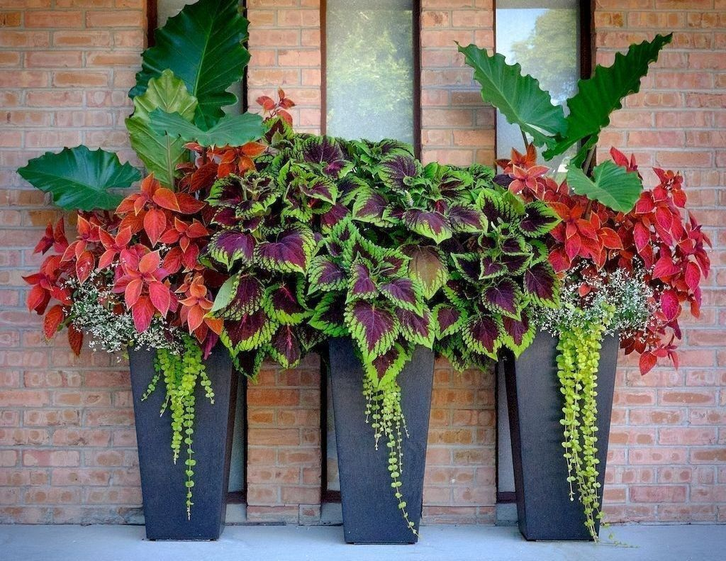 30+ Beautiful Container Garden Flower Ideas is part of Container gardening flowers, Container herb garden, Container gardening vegetables, Container gardening, Container flowers, Flower pots outdoor - When a flower arrangement is completed by a florist,there is always the creative placement of taller blooms in your arrangement […]