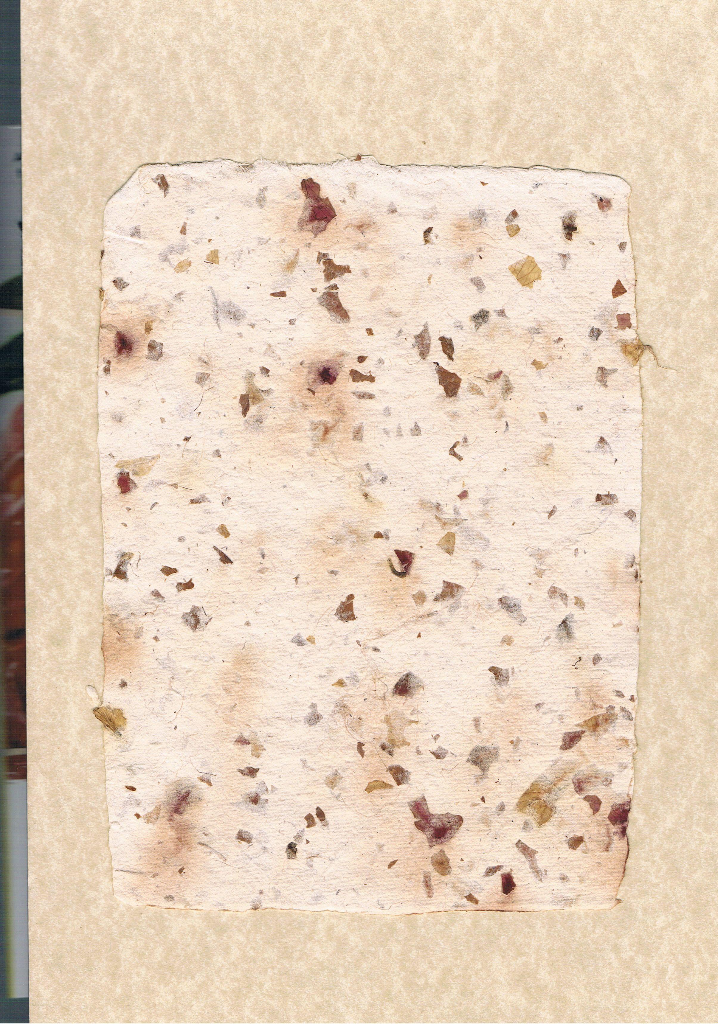 Textile Paper By J Korejko Red Onion Skins Https Www Pinterest Com Jonathankorejko Handmade Paper By J Korejko Handmade Paper Paper Crafts Paper