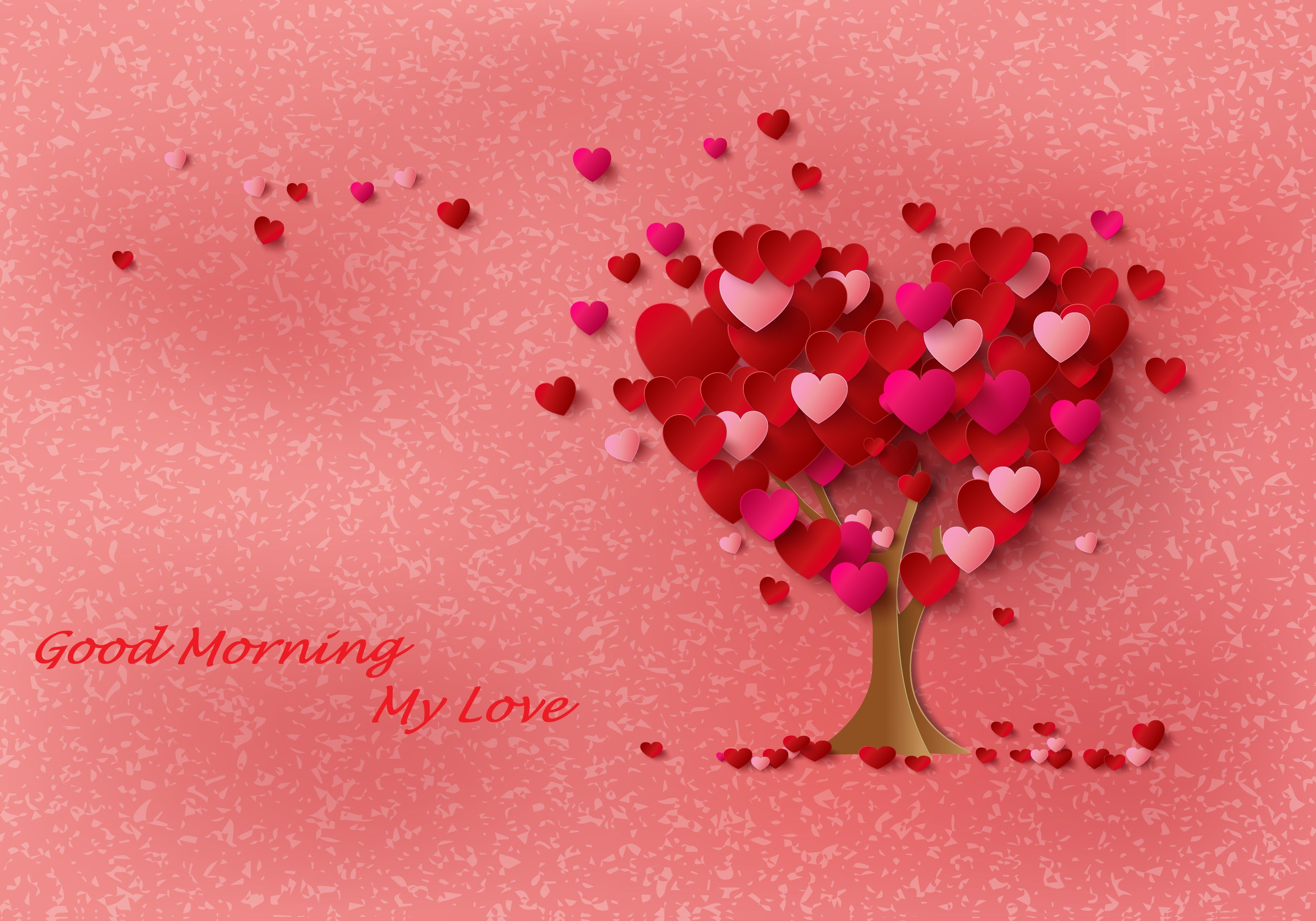 Romantic Good Morning My Love Images Hd Is Amazing Hd Wallpapers