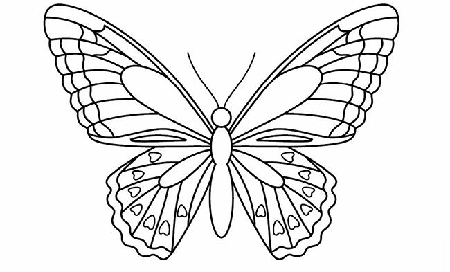 Printable Crafts Colouring Pages Free Premium Templates Butterfly Coloring Page Butterfly Outline Butterfly Template