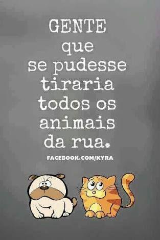 Euzinha Imagens Legais Animais Frases Animais E Amor Pelos Animais