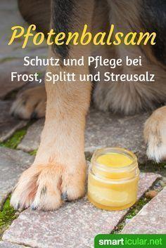 Pflegenden und schützenden Pfotenbalsam für Hunde selber machen