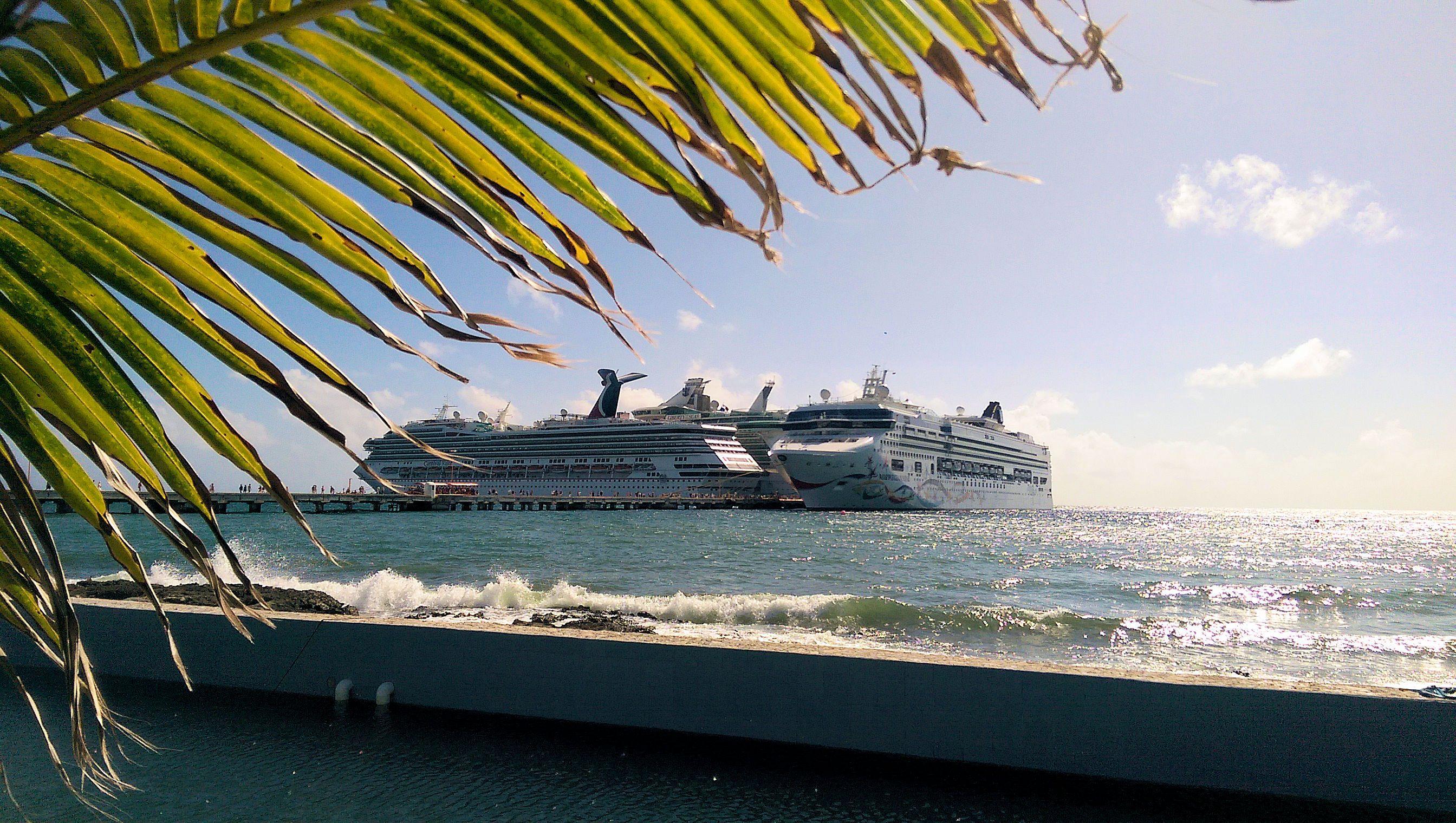 Allure of the Seas Caribbean Princess Carnival