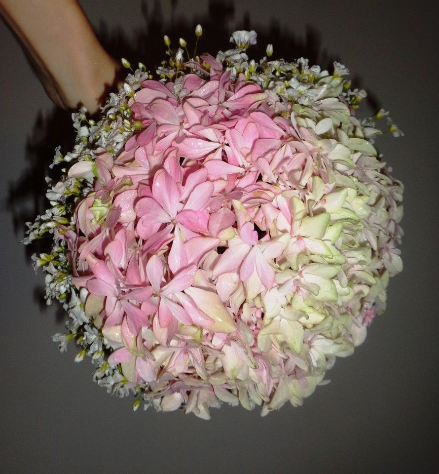 poze buchet de mireasa cu hortensii roz si floarea miresei. Black Bedroom Furniture Sets. Home Design Ideas