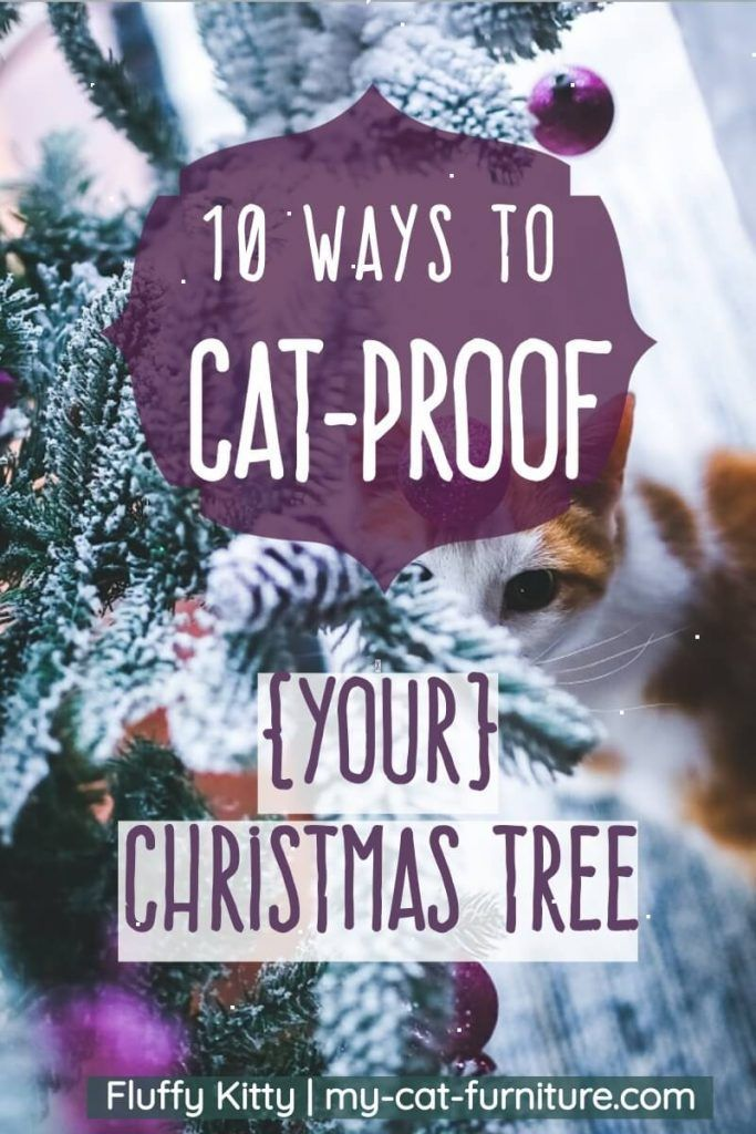 How To Keep Cats Away From Christmas Tree.10 Ways To Cat Proof Your Christmas Tree Fluffy Kitty