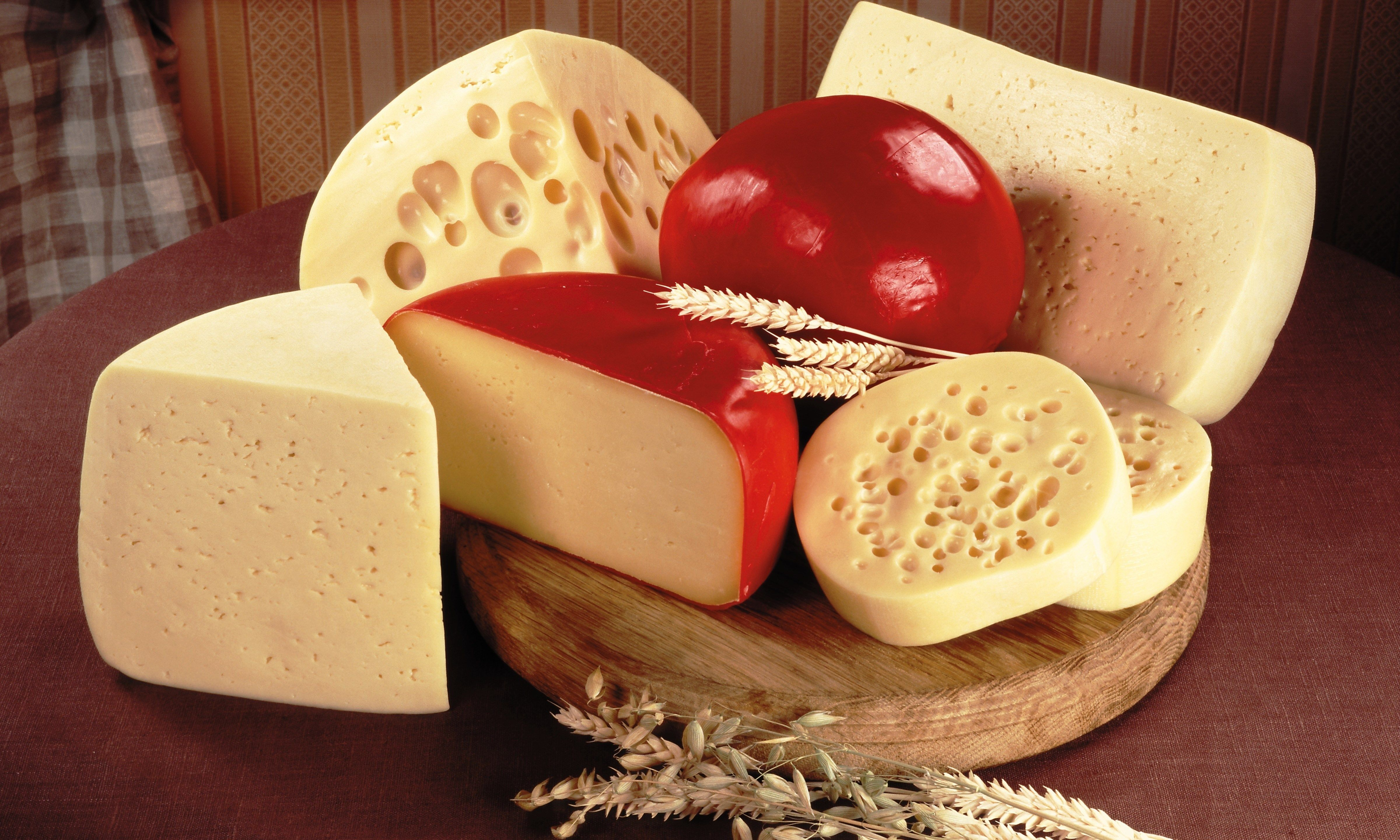 4k cheese hd wallpaper (4800x2880) wallpapers and