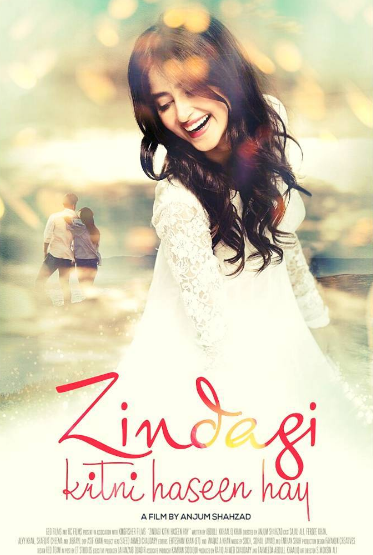 Zindagi Kitni Haseen Hay (2016) Urdu Movie 480p HDRip 350MB
