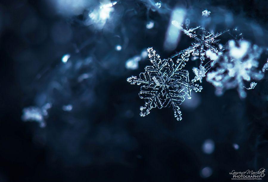 Falling snow by Gallynette.deviantart.com on @deviantART