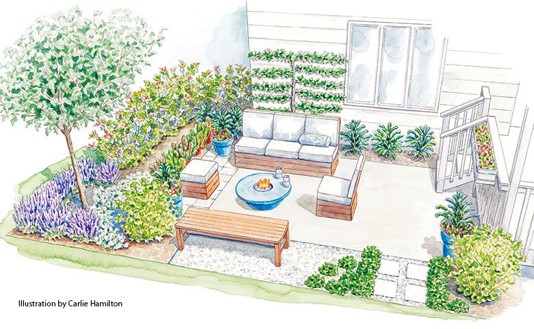 An edible landscape for around the patio
