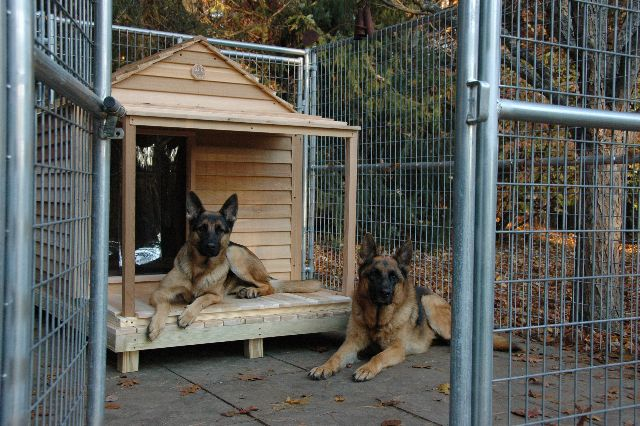 Extra Large Dog House Custom Cedar Dog House Extra Large Dog