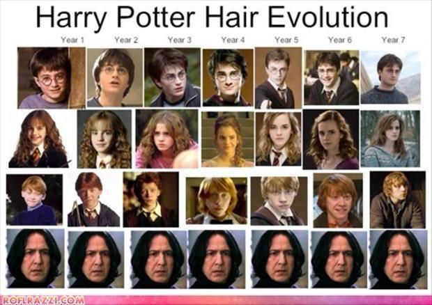 Harry Potter Hair Evolution Harry Potter Haare Harry Potter Lustige Bilder Harry Potter Fakten