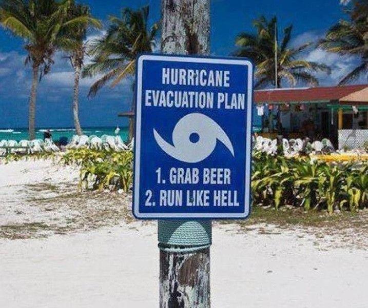 23 Things Everyone Who Lives In Florida Will Understand Lustige Bilder Picdump Und Florida