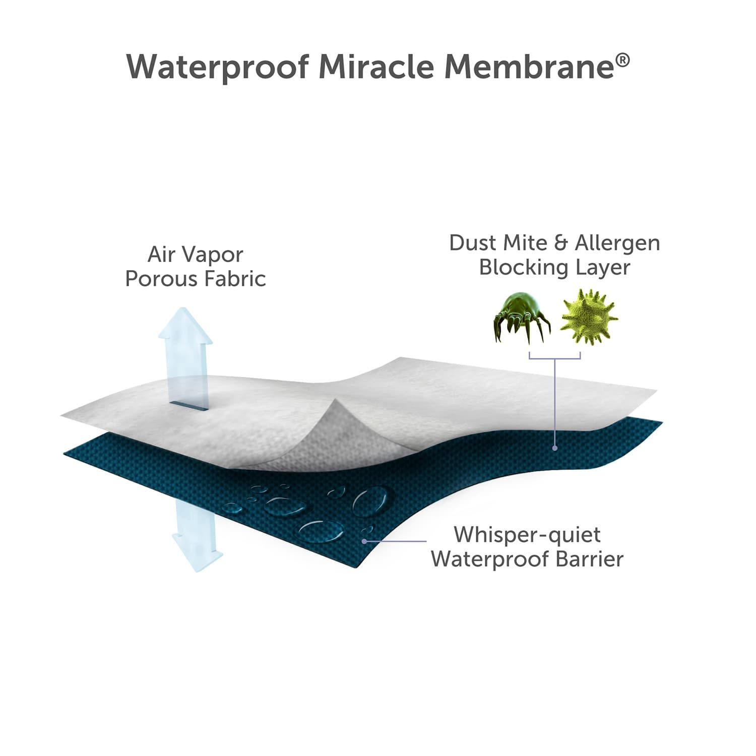 Protect A Bed Waterproof Mattress Protector Bed Protect
