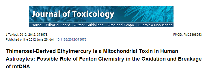 """{Ethylmercury Is a Mitochondrial Toxin} """"Thimerosal is a preservative that is widely used in medical products, including as a preservative in vaccines, immunoglobulin preparations, skin test antigens, antivenins, ophthalmic and nasal products, and tattoo inks, and is composed of 49.6 percent ethylmercury by weight"""""""
