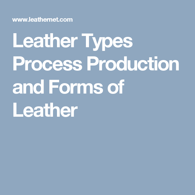 Leather Types Process Production and Forms of Leather