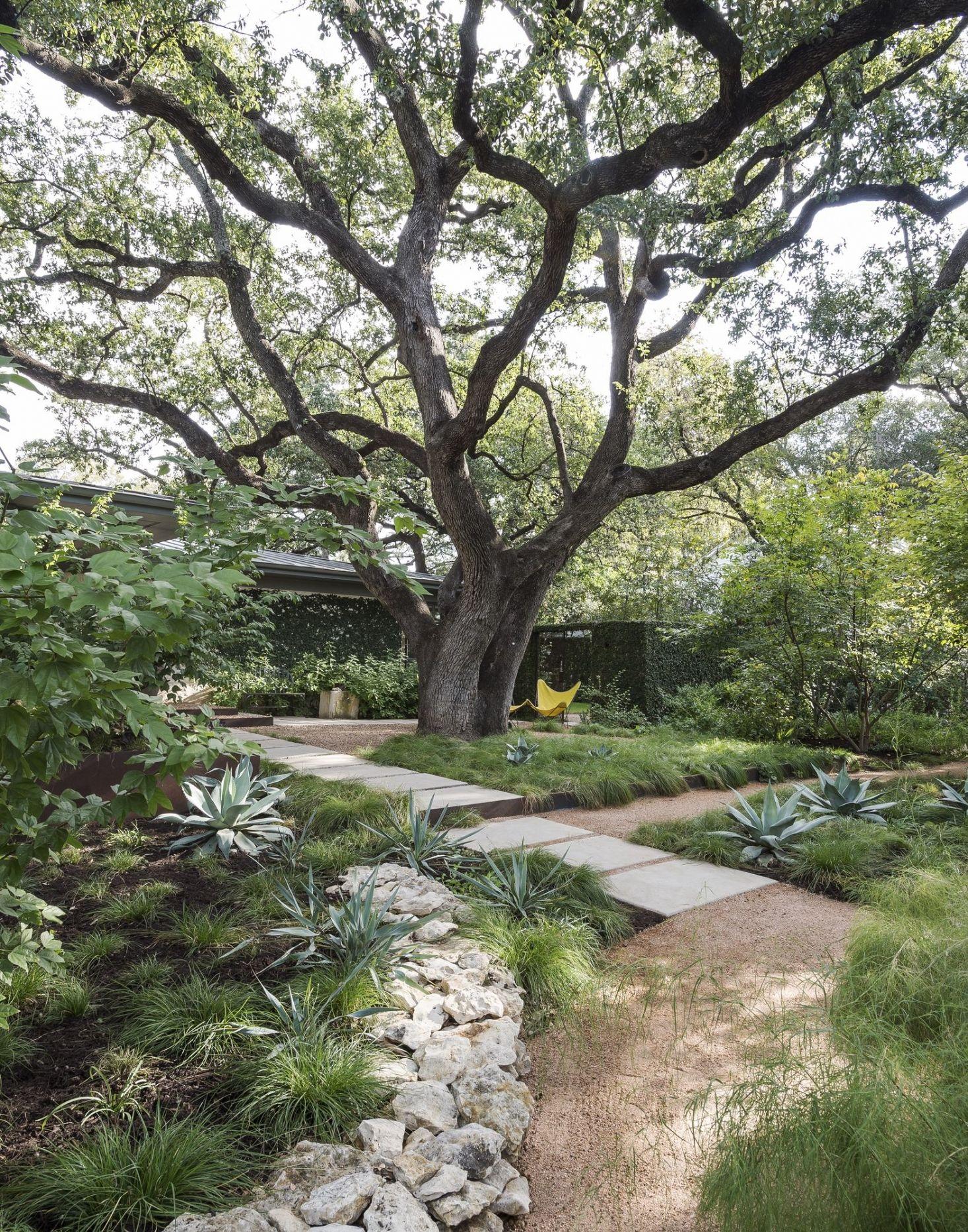 35 Smart And Stylish Garden Screening Ideas To To Transform Your Garden Small Backyard Landscaping Backyard Landscaping Designs Backyard Garden Design